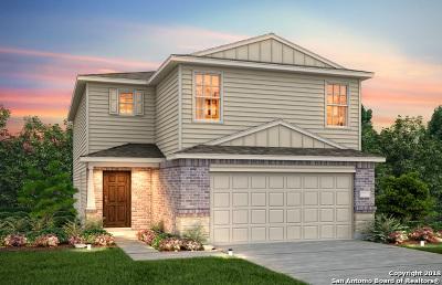 San Antonio Single Family Home New: 9714 Silver Mist Way