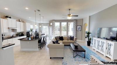 San Antonio Single Family Home New: 11535 Escobar