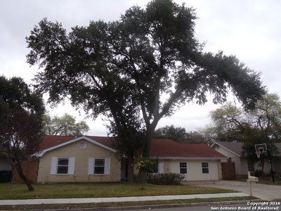 San Antonio Single Family Home New: 3138 Leyte St