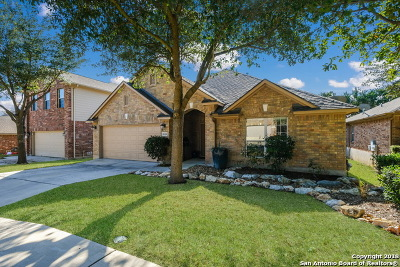 Helotes Single Family Home New: 8918 Hanover Forest