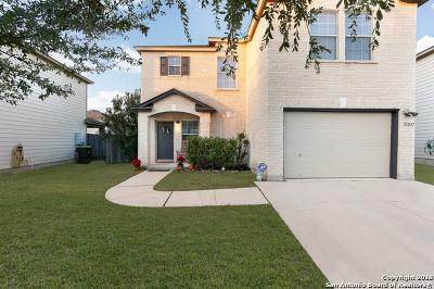 Bexar County, Medina County Single Family Home New: 11047 Barclay Pt