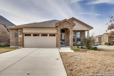 New Braunfels Single Family Home New: 870 Pecan Pt