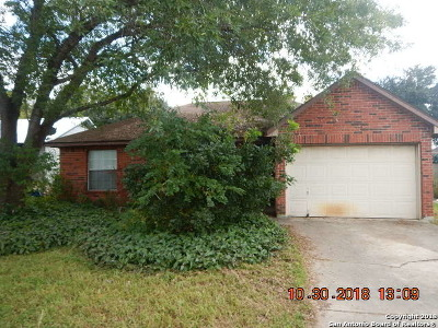 San Antonio Single Family Home New: 314 Channing Ave