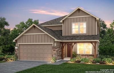 Single Family Home For Sale: 202 Salz Way