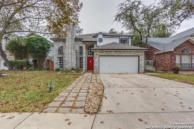 San Antonio Single Family Home New: 2115 Mollys Way Dr