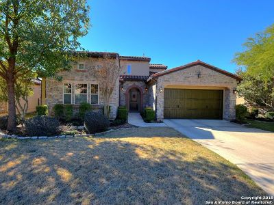 San Antonio Single Family Home New: 22507 Viajes