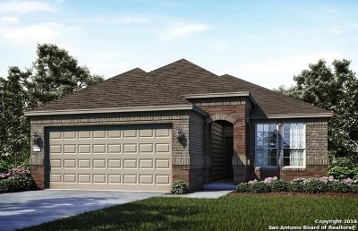 Boerne Single Family Home New: 27450 Paraiso Sands