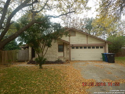 San Antonio Single Family Home New: 13251 Larkwalk St