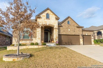 San Antonio Single Family Home New: 12615 Lexi Petal