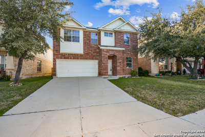 Bexar County Single Family Home New: 915 Palladio Pl