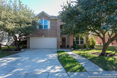 San Antonio Single Family Home New: 410 Mesa Hill