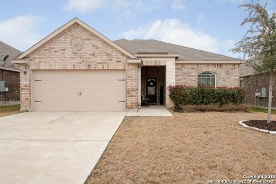 New Braunfels Single Family Home New: 6168 Daisy Way