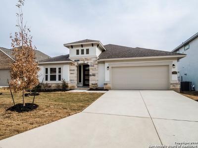 Boerne Single Family Home New: 27212 Dana Creek Dr