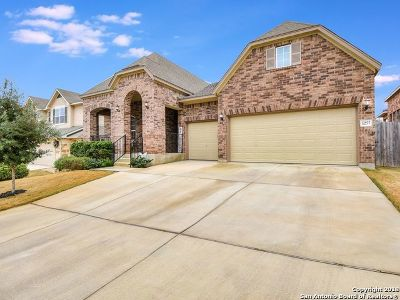 San Antonio Single Family Home New: 12622 Ozona Ranch