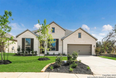 New Braunfels Single Family Home New: 1113 Carriage Loop