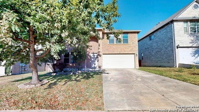 Cibolo Single Family Home New: 132 Springtree Hollow