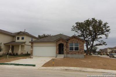 San Antonio TX Single Family Home New: $236,500