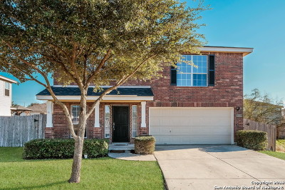 San Antonio Single Family Home New: 522 Arabian