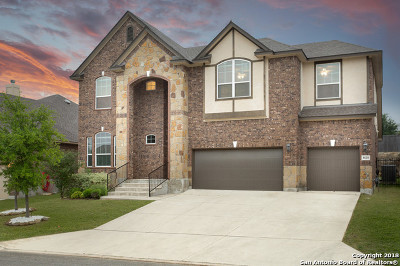 Boerne Single Family Home New: 8610 Danatop Dr