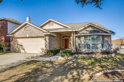 San Antonio Single Family Home New: 5343 Stormy Trail