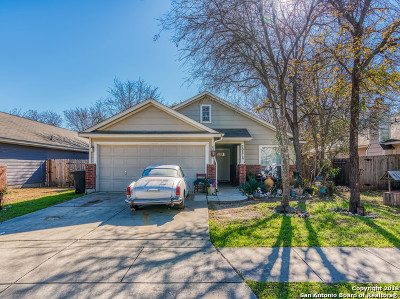 San Antonio Single Family Home New: 10814 Bridle View Dr