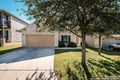 San Antonio TX Single Family Home New: $214,000