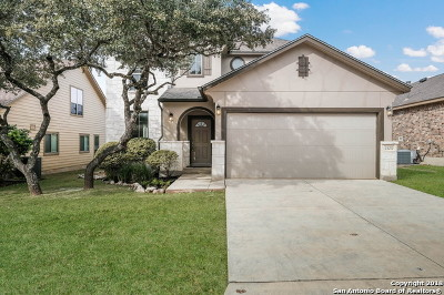 San Antonio TX Single Family Home New: $285,500