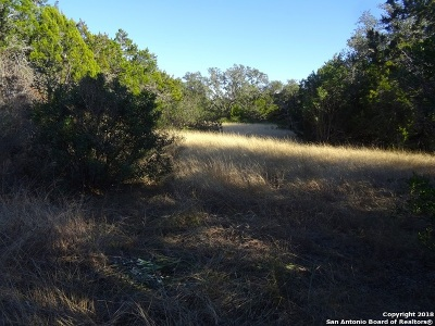 Hondo Residential Lots & Land For Sale: 000 County Road 242