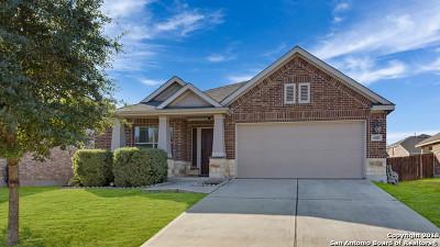 San Antonio Single Family Home New: 8415 Cheyenne Pass