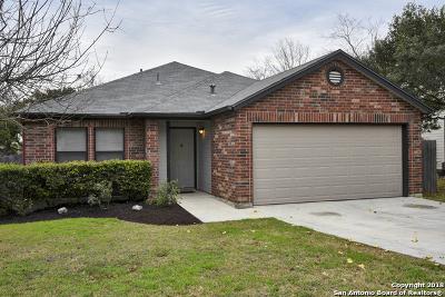 San Antonio Single Family Home New: 10150 Silverwagon