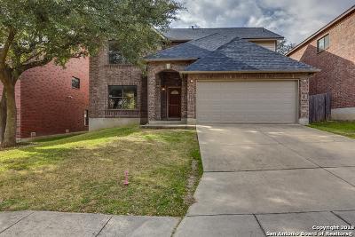 San Antonio Single Family Home New: 10523 Blackstone Creek