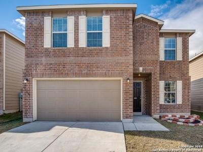 San Antonio Single Family Home New: 13207 Cipresso Palco