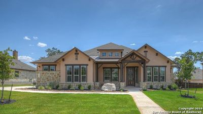 New Braunfels Single Family Home For Sale: 328 Allemania Dr