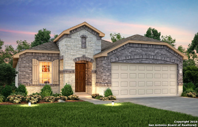 San Antonio TX Single Family Home New: $253,139
