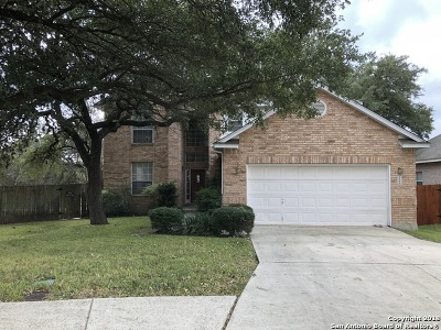 San Antonio TX Single Family Home New: $359,885