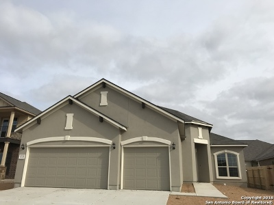 New Braunfels TX Single Family Home New: $299,259