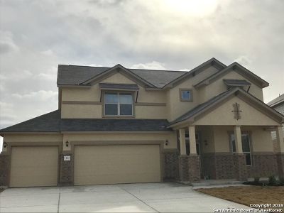 New Braunfels TX Single Family Home New: $319,008