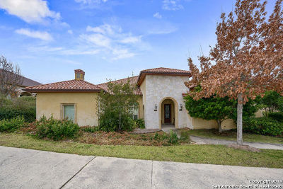 San Antonio TX Single Family Home New: $349,000