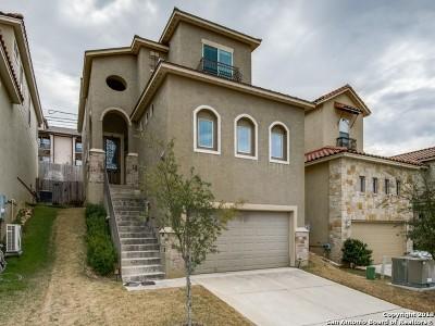 San Antonio Single Family Home New: 3910 Woodbridge Way