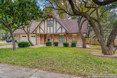 San Antonio Single Family Home For Sale: 130 Encino Grande St