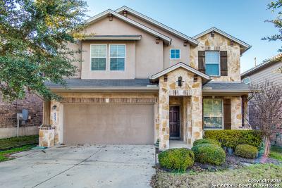 Bexar County Single Family Home Active Option: 6523 Palmetto Way