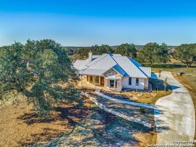 New Braunfels Single Family Home For Sale: 1175 Bordeaux Ln