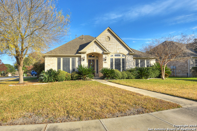 New Braunfels Single Family Home For Sale: 211 Autumn Oak