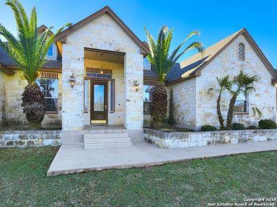 New Braunfels Single Family Home Price Change: 151 Zenith Ln
