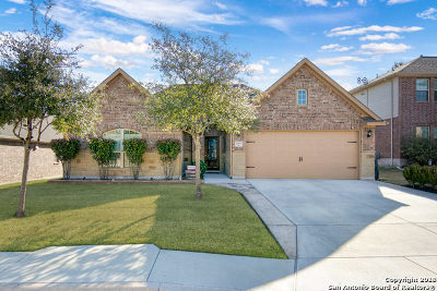 Helotes Single Family Home For Sale: 17930 Bierstadt Mt