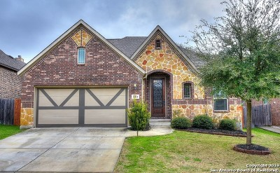 Boerne Single Family Home For Sale: 27114 Smokey Chase
