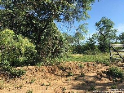 Atascosa County Farm & Ranch For Sale: 00 Lozano Rd