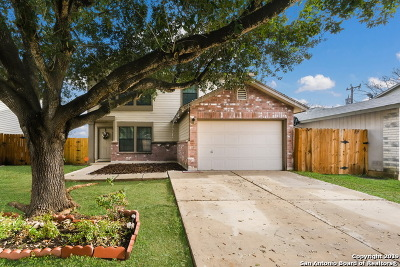 Converse Single Family Home Active Option: 8154 Easy Meadow Dr