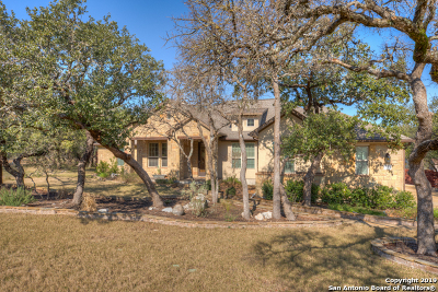 New Braunfels Single Family Home Active Option: 241 Gruene Haven