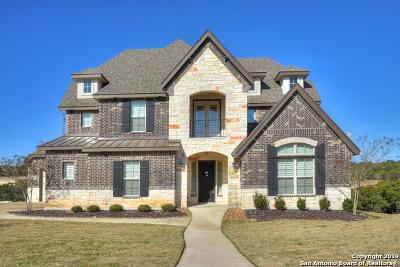 San Antonio Single Family Home For Sale: 26023 Turquoise Sky